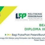 Beasiswa D3 Kelapa Sawit di Politeknik LPP Yogyakarta FULL